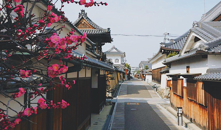 寺内町の画像2